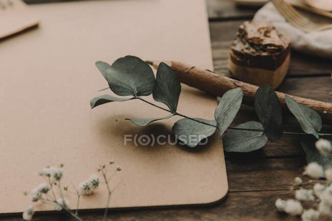Cierre de eucalipto, lápiz y portapapeles - foto de stock
