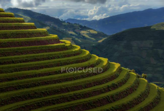 Terraced rice fields, Mu Cang Chai, Yen Bai, Tay Bac, Vietnam — Stock Photo