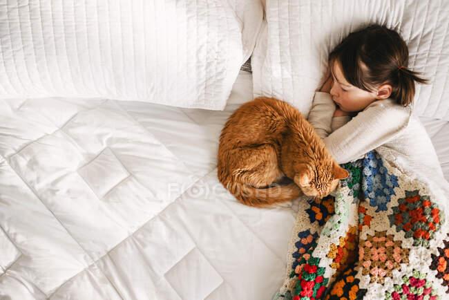 Menina jovem dormindo na cama com gato — Fotografia de Stock