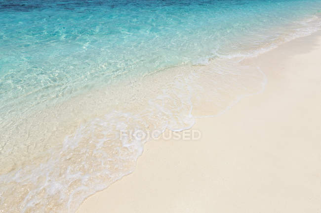 Close-up of a tropical beach, Maldives — Stock Photo