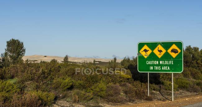 Знаки дикой природы на дороге, Западная Австралия, Австралия — стоковое фото