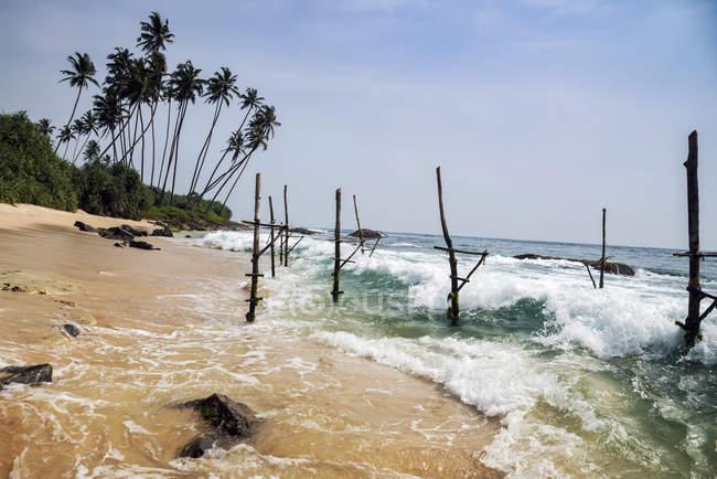 Vista panoramica dei bastoncini da pesca, spiaggia di Koggala, Galle, Sri Lanka — Foto stock