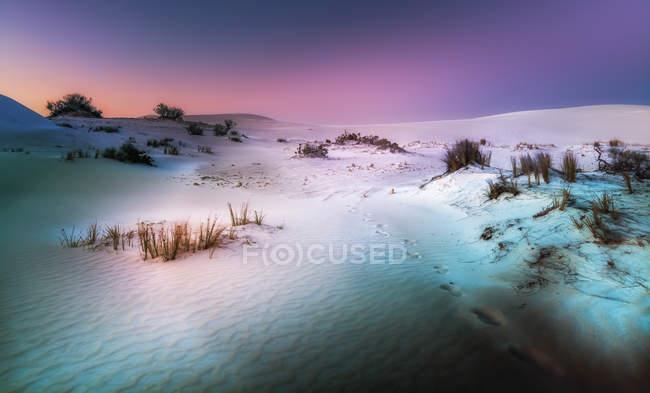 Sunset over the white sand dunes of Lancelin, Western Australia, Australia — Stock Photo