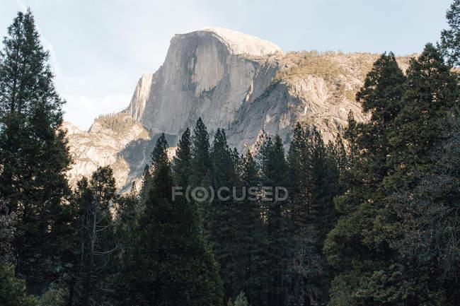 Vue panoramique sur El Capitan, Yosemite National Park, Californie, Amérique, Usa — Photo de stock
