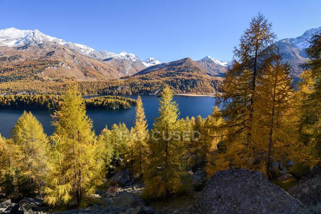 Scenic view of Lake Sils in autumn, Engadine Valley, Graubunden,  Switzerland — Stock Photo