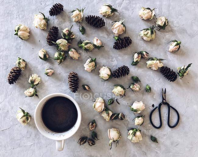 Cup of coffee surrounded by pine cones and rosebuds — Stock Photo