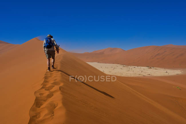 Man hiking up sand dune above Deadvlei, Sossusvlei, Namibia — стокове фото