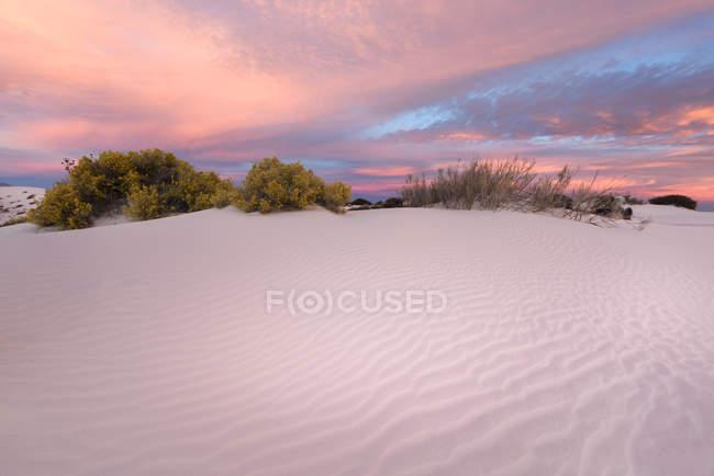 Живописный вид на пустынный пейзаж, Национальный памятник Уайт-Сэндс, Нью-Мексико, Америка, США — стоковое фото
