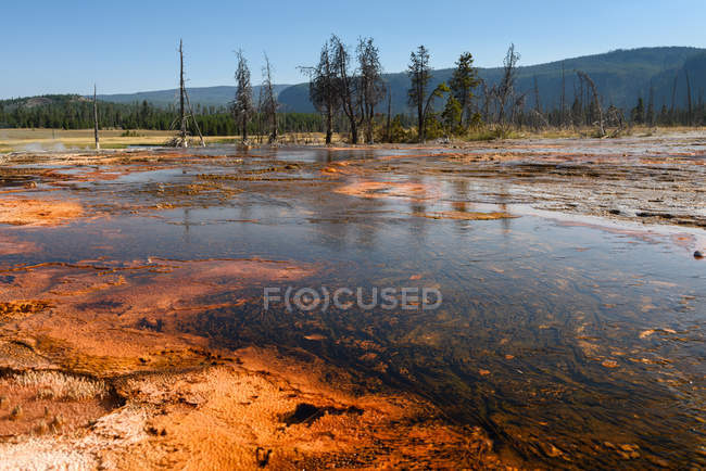 Scenic view of Firehole River, Yellowstone National Park, Wyoming, America, USA — Stock Photo