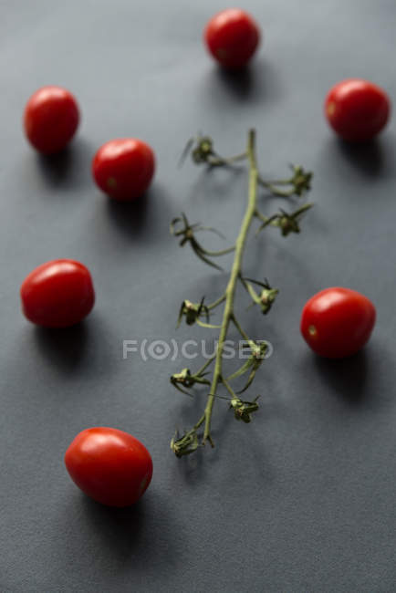 Close-up of cherry tomatoes and a vine, closeup view — Stock Photo