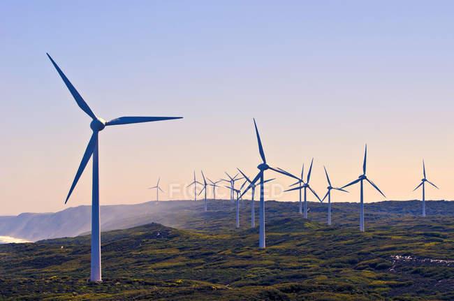Eoliennes dans un parc éolien, Albany, Australie occidentale, Australie — Photo de stock