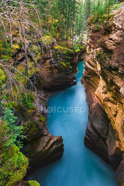 Живописный вид на водопад Атабаска, Национальный парк Джаспер, Джаспер, Альберта, Канада — стоковое фото
