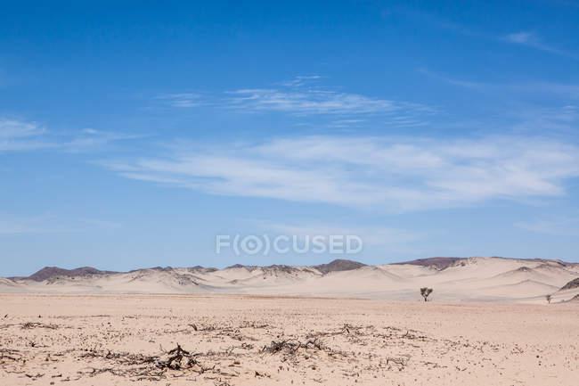 Vista panoramica del paesaggio desertico, Damaraland, Namibia — Foto stock