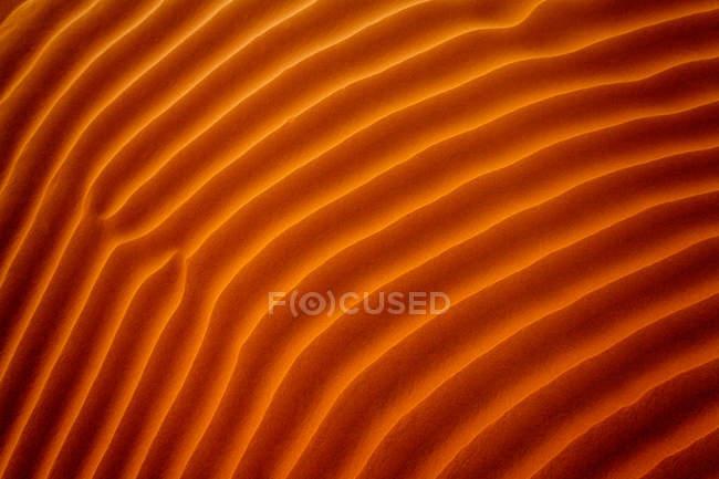 Gros plan sur les ondulations dans le sable, Riyad, Arabie Saoudite — Photo de stock