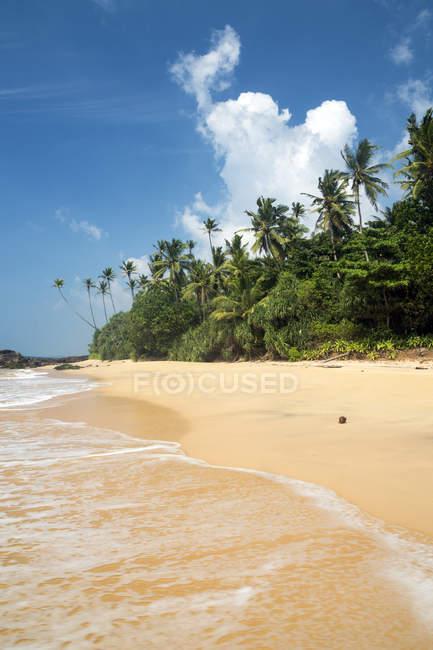 Vista panoramica sulla spiaggia tropicale, Wellamadama, Matara, Provincia meridionale, Sri Lanka — Foto stock