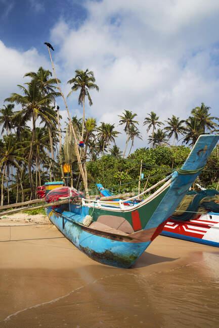 Barche da pesca sulla spiaggia, Weligama, Matara, Provincia del Sud, Sri Lanka — Foto stock