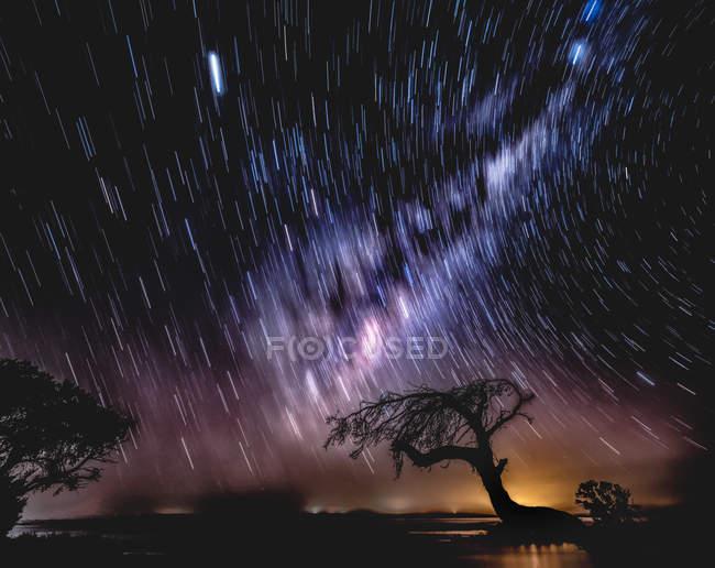 Scenic view of Star trail, Island point, Mandurah, Western Australia, Australia — стоковое фото