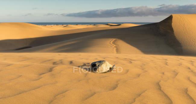 Panoramablick auf die Wüstenlandschaft, San Bartolome de Tirajana, Gran Canaria, Kanarische Inseln, Spanien — Stockfoto