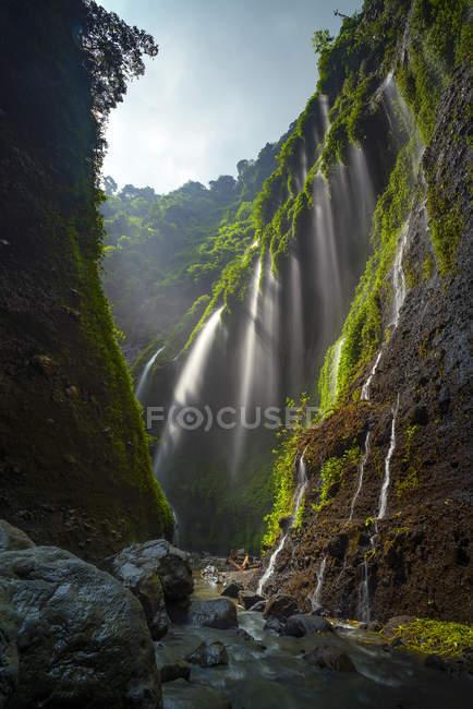 Vista panorámica de la cascada de Madakaripura, Java Oriental, Indonesia - foto de stock