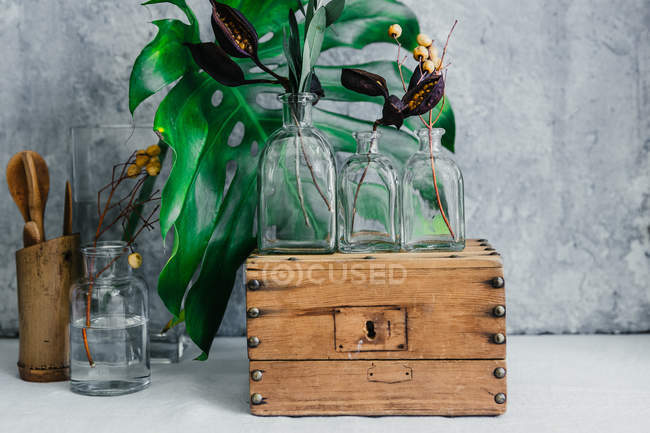 Dried flowers in glass bottles — Stock Photo