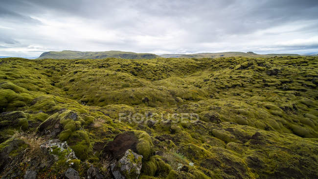 Eldhraun Lava Field near village of Kirkjubaejarklaustur, South Iceland — Stock Photo