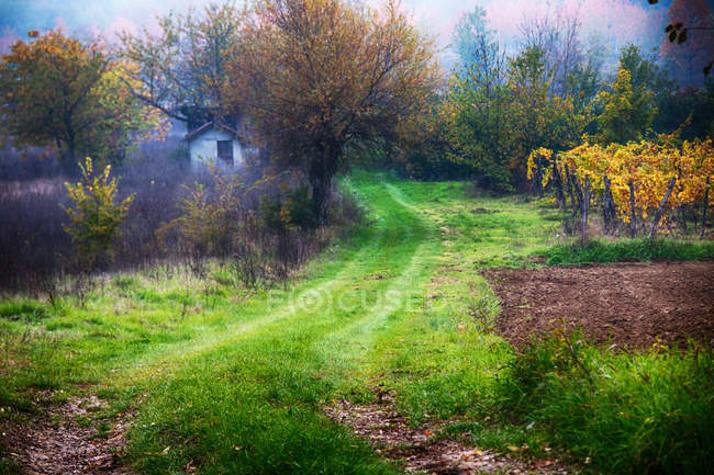 Scenic view of Rural landscape, Tortona Hills, Alessandria, Piedmont, Italy — Stock Photo