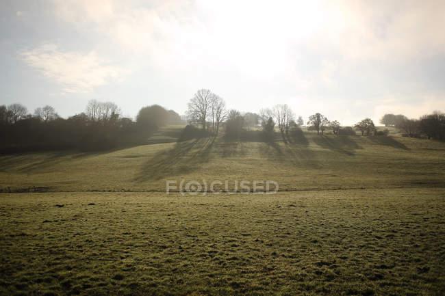 Vue panoramique sur le paysage rural, Normandie, France — Photo de stock