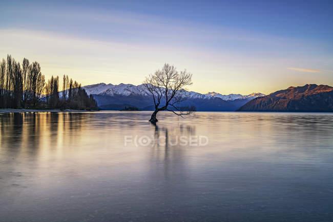 Malerische Aussicht auf Weide in Lake Wanaka, Südinsel, Neuseeland — Stockfoto