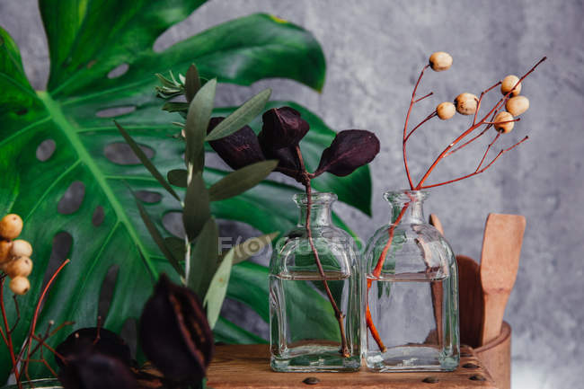 Rustic wooden box with glass vases and plants — Stock Photo