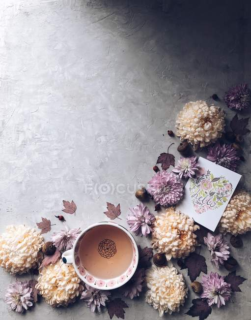 Chrysanthemum flowers and a cup of herbal tea and hello card — Stock Photo