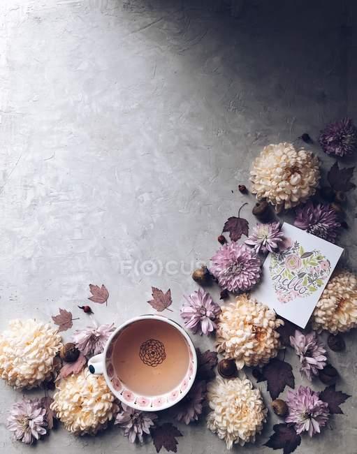 Fleurs de chrysanthème et une tasse de tisane et carte bonjour — Photo de stock