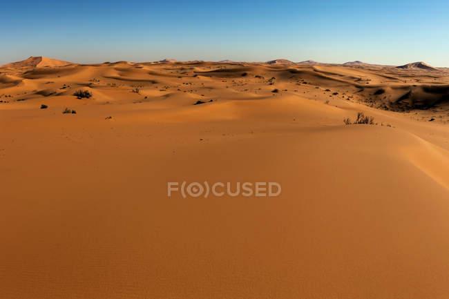 Close-up view of sand dunes in the desert, Saudi Arabia — Stock Photo
