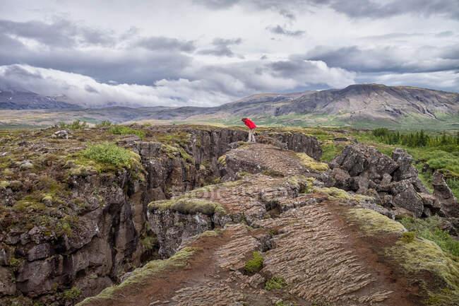 Mujer de pie en un borde del acantilado mirando el valle de la grieta, Parque Nacional Thingvellir, Islandia - foto de stock