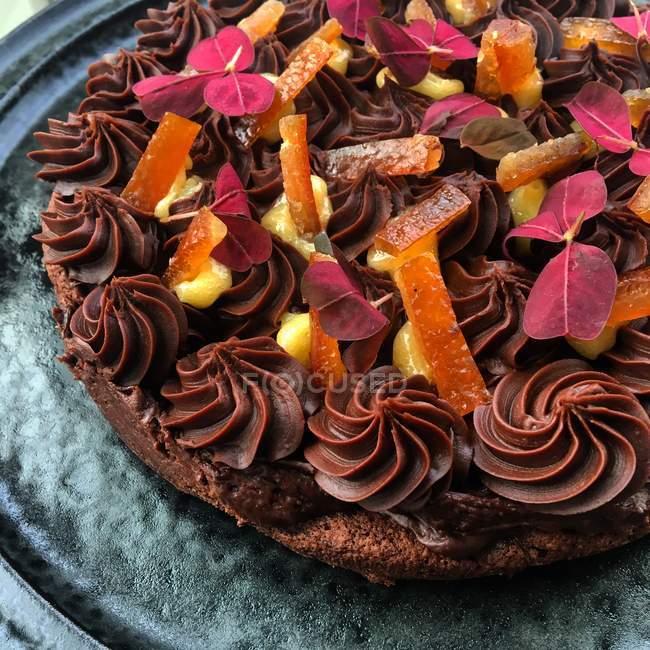 Шоколадный торт с заварным кремом и сушеными апельсинами — стоковое фото