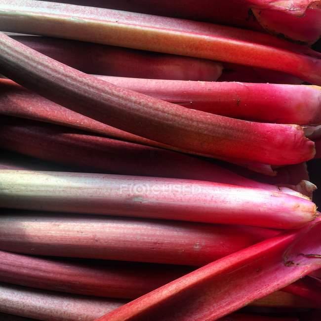 Vista cercana de la fresca y sabrosa rhubarb - foto de stock