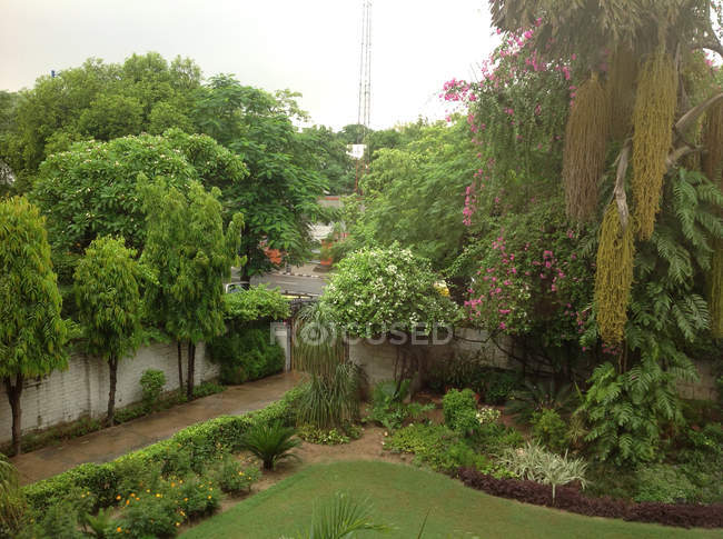 Scenic view of Residential garden, New Delhi, India — Stock Photo