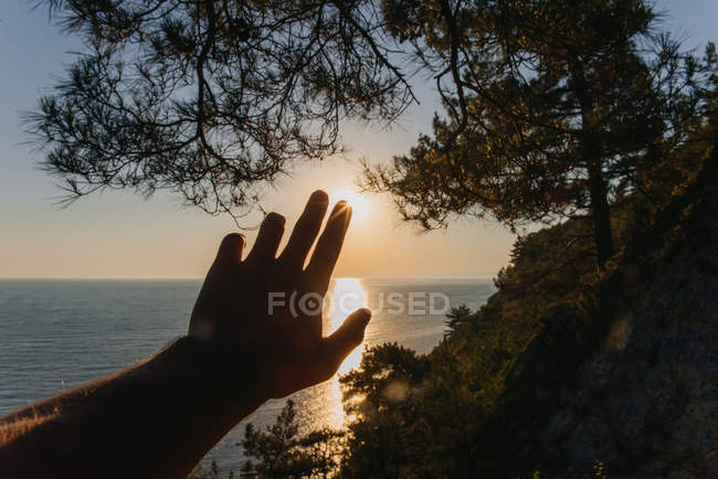 Мужская рука тянется к солнцу на закате — стоковое фото