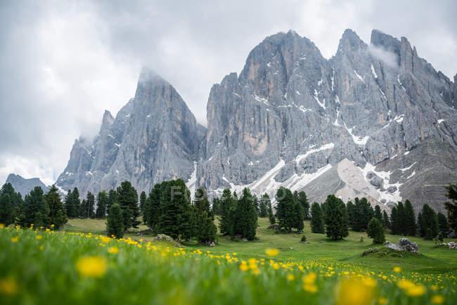 Vista panorâmica de picos de montanha, parque de natureza de Geisler Puez, Dolomitas, Trentino, Tirol do Sul, Itália — Fotografia de Stock