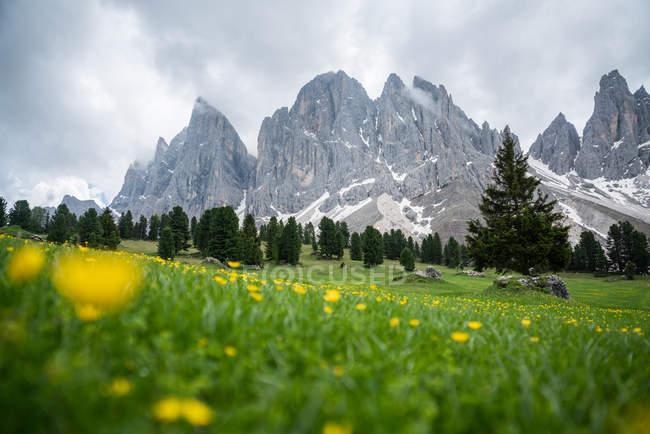 Vue panoramique sur les sommets, le parc naturel de Puez Geisler, Dolomites, Trentin, Tyrol du Sud, Italie — Photo de stock
