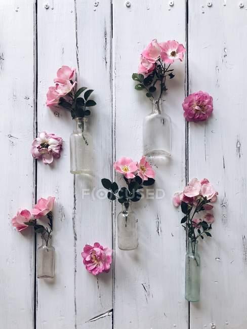 Vista de close-up de rosas rosa em garrafas de vidro — Fotografia de Stock