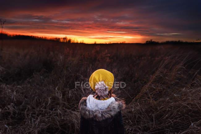 Вид сзади на девушку, стоящую в поле и смотрящую на закат, США — стоковое фото