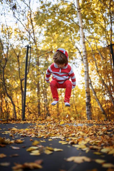 Мальчик прыгнул на трамплине, покрытом осенними листьями, США — стоковое фото