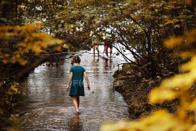Девушка играет в ручье, США — стоковое фото