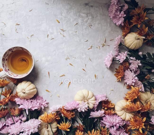 Tasse de thé, citrouilles et fleurs d'automne — Photo de stock