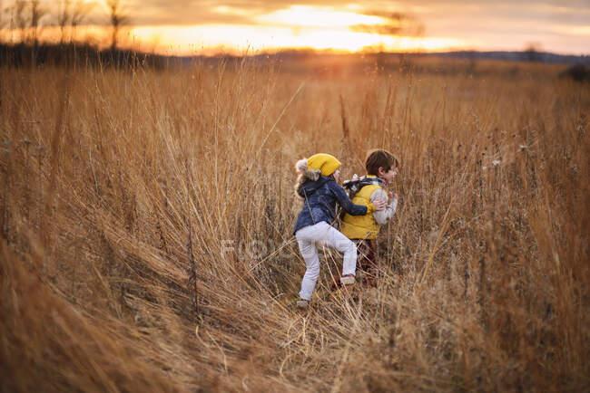 Menino e menina brincando em um campo ao pôr do sol, Estados Unidos — Fotografia de Stock