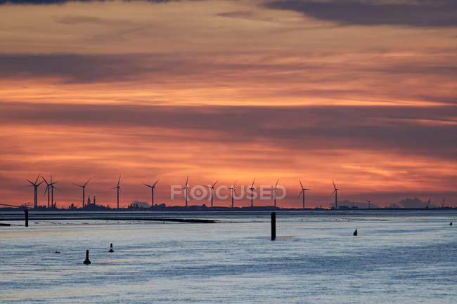 Scenic view of Wind farm along the Dollard, East Frisia, Lower Saxony, Germany — Stock Photo
