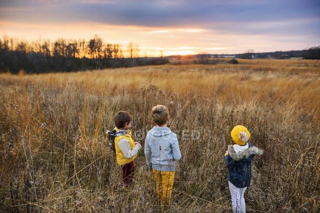 Trois enfants debout dans un champ au coucher du soleil, États-Unis — Photo de stock