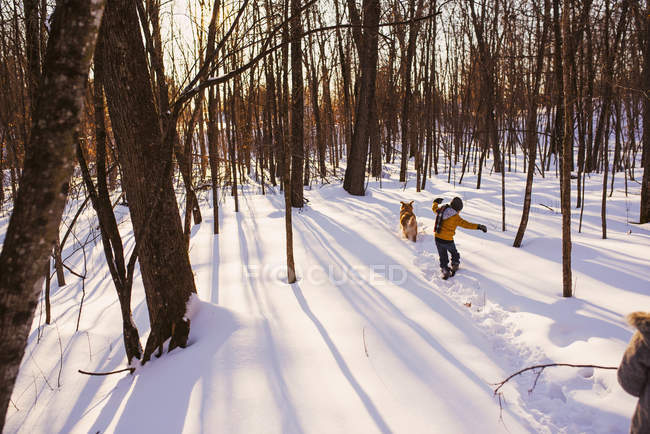 Boy and girl walking through a forest in the snow with his dog, United States — стокове фото