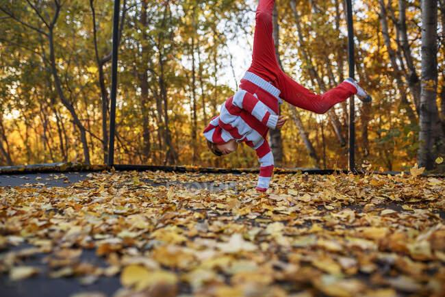 Menino pulando em um trampolim coberto em folhas de outono, Estados Unidos — Fotografia de Stock