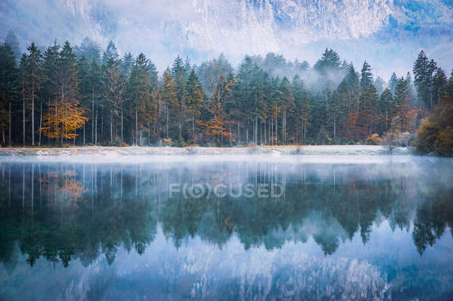 Autumn forest reflections in a lake, Bluntautal near Golling, Salzburg, Austria — Stock Photo